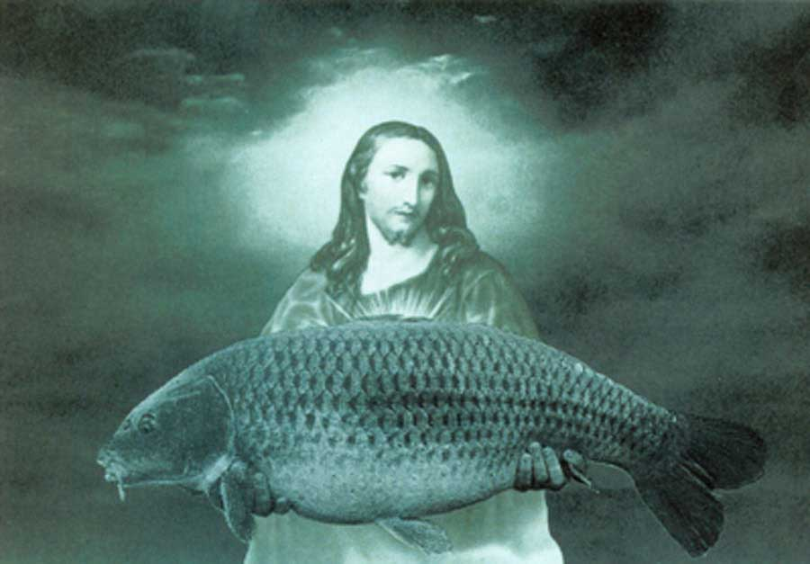 The-Big-Fish