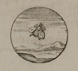 emb.14