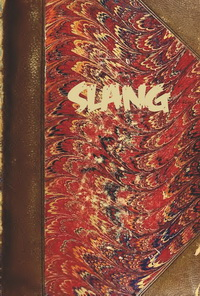 Linguistische Aspekte des Slang (4)